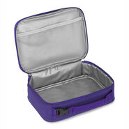 High Sierra Single Compartment in the color Roswell UFO/ Deep Purple.